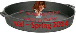 Flash_Spring2014