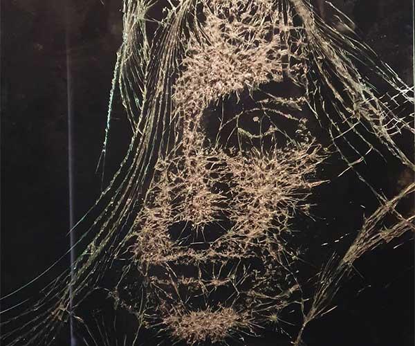 shattered_glass_portraits_t